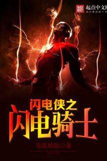 Flash: The Lighning Knight